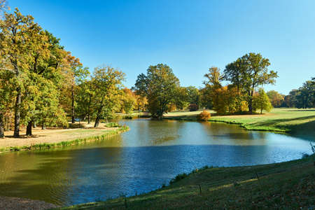 pond in the garden of Muskauer park during autumn in Germany