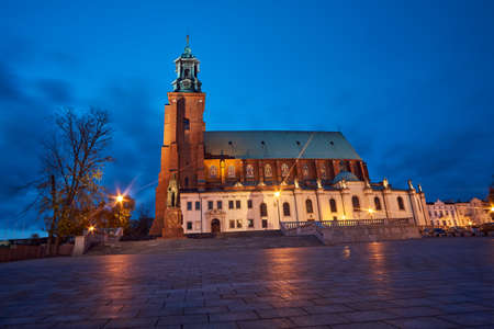 Statue and Gothic cathedral church by night in Gniezno