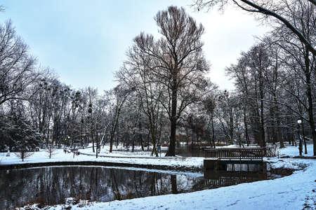 Wooden pedestrian bridge in a park during winter in Poland