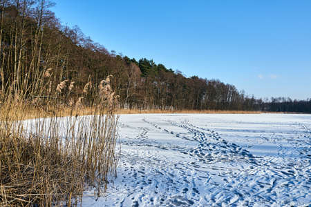 Traces in the snow on a frozen lake in Poland
