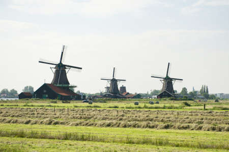 Traditional windmills and the field at the Zaanse Schans Stock Photo - 14319309
