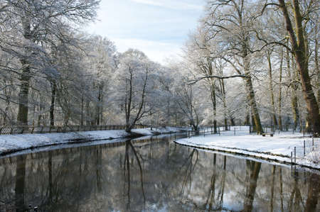 Beautiful trees covered with snow are reflecting in a still water in winter, Netherlands photo