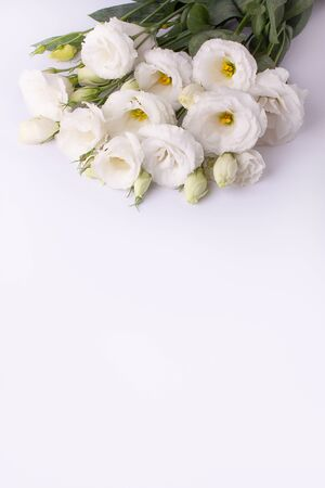 Bouquet of white blossoming eustoma flowers on a white paper background.