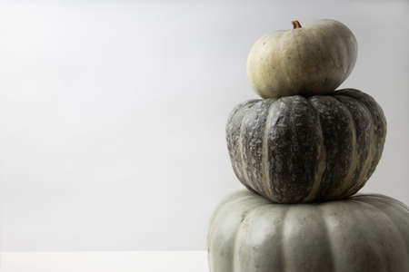 Real fresh gray pumpkin on white paper background. Side view.
