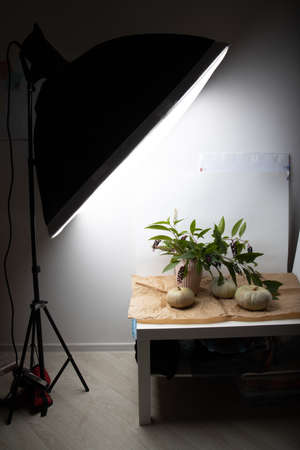 Real fresh gray pumpkin on paper background with fabric drapery. Backstage.