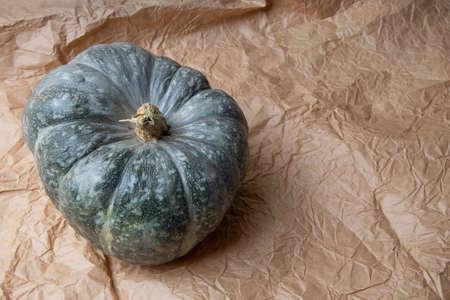 Real fresh gray pumpkin on paper background. 免版税图像