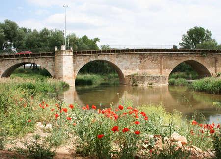 arabe: Puente de piedra antigua en GuadalajaraEspa�a