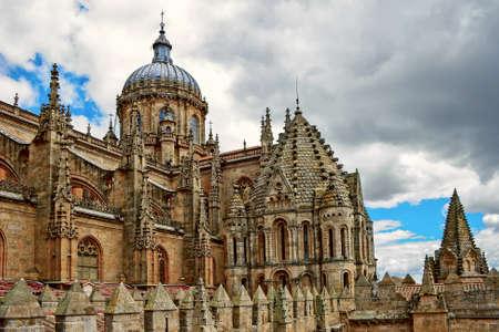 Medieval Cathedral in Salamanca, Spain