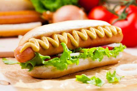 Perros calientes con mostaza, salsa de tomate en una mesa de picnic Foto de archivo - 37876601