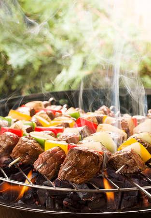 Gegrild rundvlees spiesjes met ui en paprika kleur. Stockfoto - 41142294