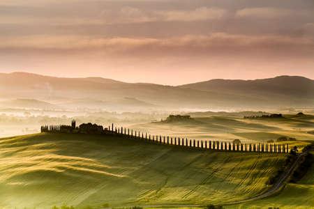 Toscane weg met cipressen bij zonsondergang 's ochtends, Val d'Orcia, Italië