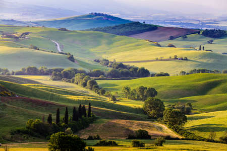 countryside background: Beautiful and miraculous colors of green spring landscape of Tuscany, Italy.