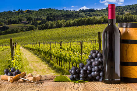 wine country: Red wine bottles with grapes on wodden board. Beautiful Tuscany background