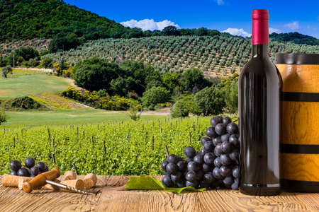 Red wine bottles with grapes on wodden board. Beautiful Tuscany background 版權商用圖片 - 43469400