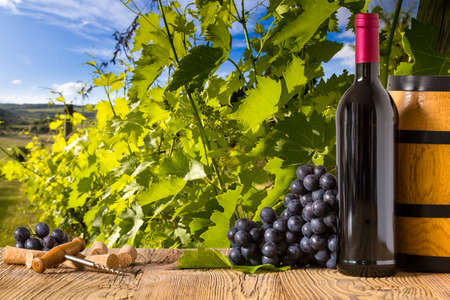 the tuscany: Red wine bottles with grapes on wodden board. Beautiful Tuscany background
