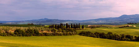 miraculous: Beautiful and miraculous colors of green spring panorama landscape of Tuscany, Italy.