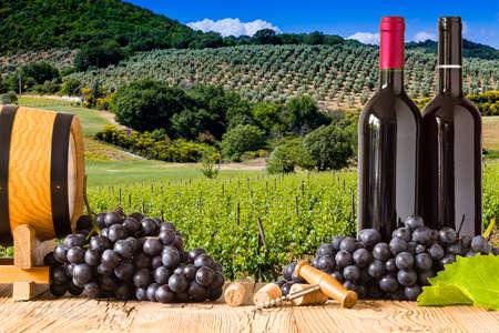 Flessen rode wijn met druiven op wodden boord. Mooie Toscane achtergrond Stockfoto