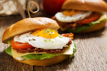 bacon fat: Sandwich with a fried egg, bacon, cheese and vegetables.