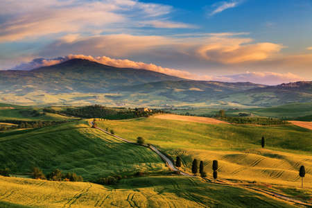 the tuscany: Beautiful and miraculous colors of green spring landscape of Tuscany, Italy.