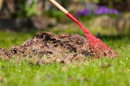 庭の掃除します。春に葉を熟成します。葉に赤の熊手。 写真素材 - 75089809