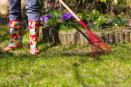 庭の掃除します。春に葉を熟成します。葉に赤の熊手。