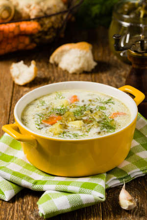 Traditional cucumber soup with pickled cucumbers. Front view. Stockfoto