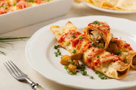 Baked pancakes with chicken in tomato sauce. Front view. Stok Fotoğraf