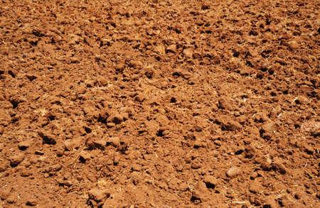 plowed field: Freshly Plowed Field In Spring Ready For Cultivation.