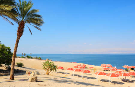 Umbrellas On Sandy Beach Of Dead Sea, Israel. photo