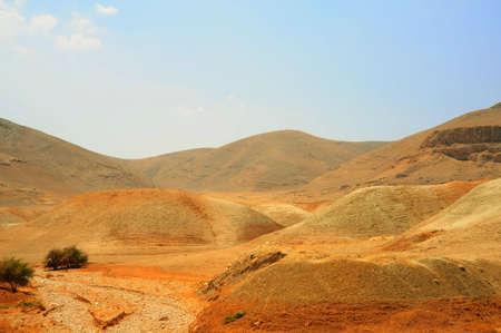 canyon negev: Dry Riverbed In Desert Near Jordan Valley, Israel Stock Photo