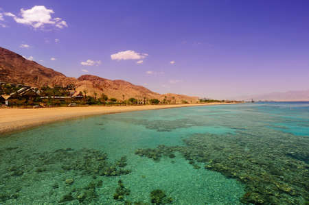 red coral colony: View To The Coastline Of Red Sea From Coral Reef Stock Photo