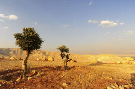 barren: Landscape Of Judea Mountains Near Dead Sea.