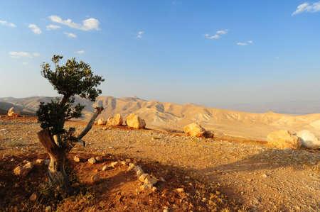 Landscape Of Judea Mountains Near Dead Sea. photo