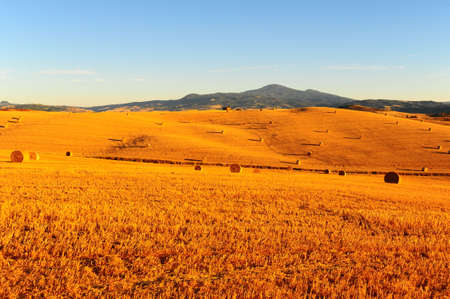 Toscana Landscape With Many Hay Bales In The Morning photo
