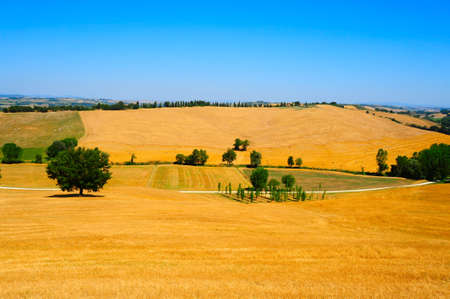 Tuscany Landscape With Many Hay Bales In The Morning photo