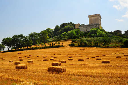 Field of Hay at The Foot of an Ancient Fortress in Tuscany photo