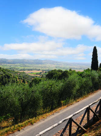 Tuscan Landscape With an Asphalt Road And a Wooden Fence photo