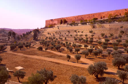 View from the Kidron Valley on the Walls of the Old City of Jerusalem, Sunrise photo