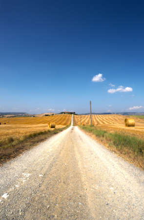 The Dirt Road Between The Fields Of Tuscany Stock Photo - 8486695
