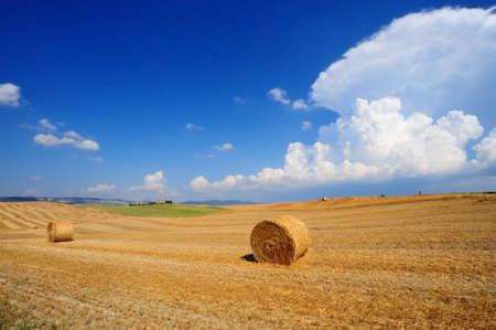 mediodía: Tuscany paisaje con muchos fardos de heno a las 12.00 horas