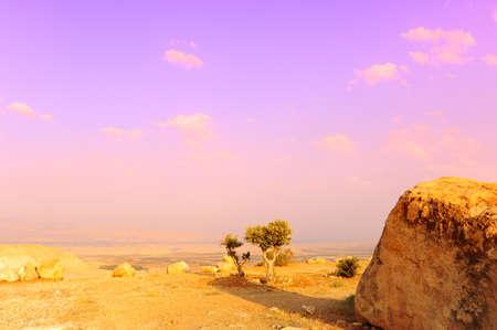 Landscape Of Judea Mountains Near Dead Sea. Sunset. photo