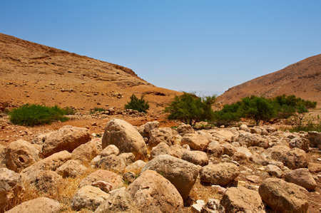 Harsh Mountainous Terrain in the West Bank, Israel Stock Photo - 10222113