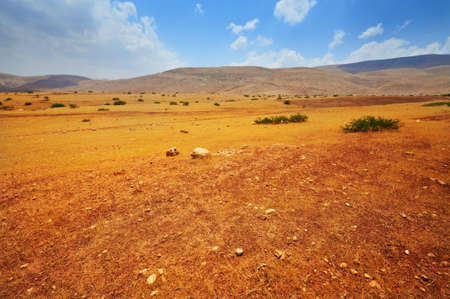 Stones in Sand Hills of Samaria, Israel Stock Photo