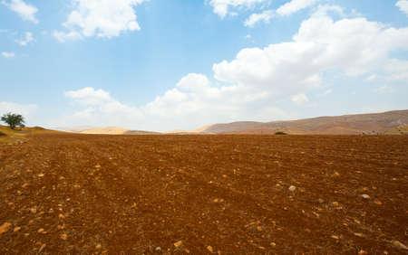 plowed: Plowed Field Against the Rocky Hills of Samaria, Israel