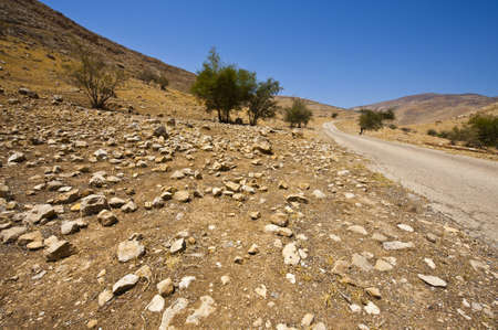Meandering Road In Sand Hills of Samaria, Israel Stock Photo - 11671844
