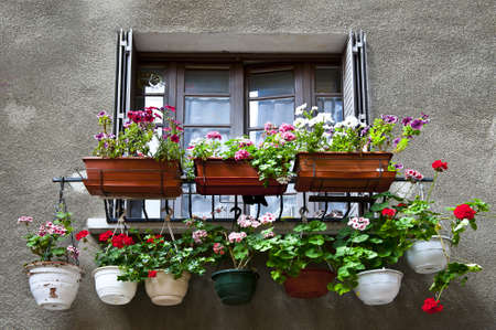 Window Decorated with Flowers in Southern France Stock Photo - 12396100