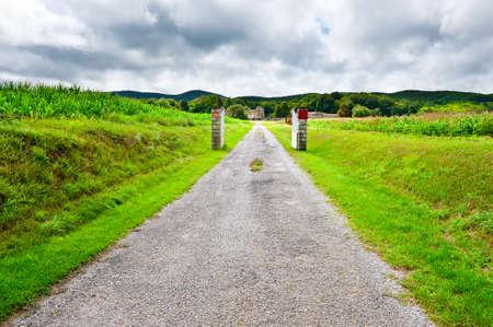 Asphalt Road  Leading to the Farm Between Corn Fields photo