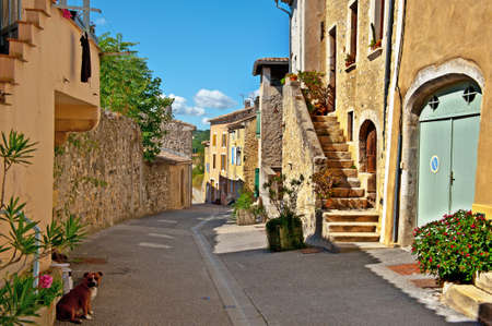 The Dog on a Deserted Street of the French City of Rochemaure