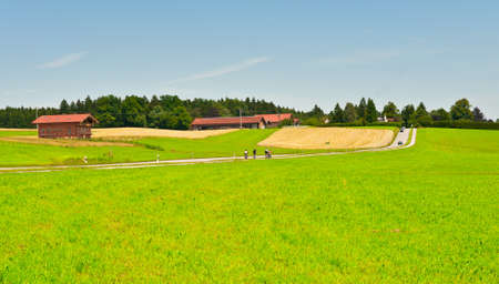 Cycling on the Road between Corn and Wheat Fields in Bavaria, Germany photo