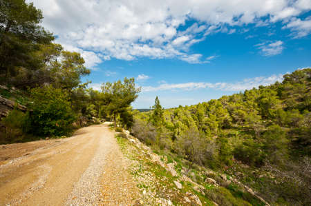 Dirt Road along Canyon in Israel photo